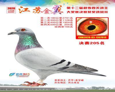江�K金翼�Q�205名