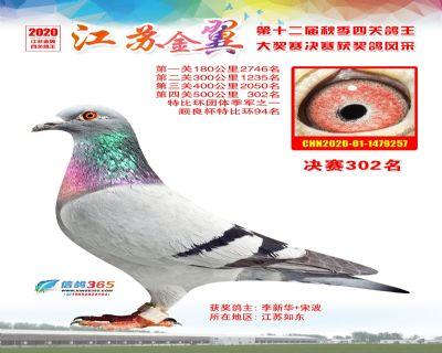 江�K金翼�Q�302名