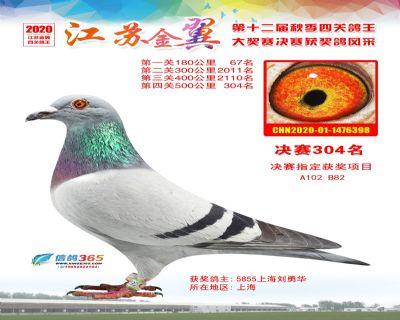 江�K金翼�Q�304名