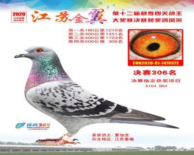 江�K金翼�Q�306名