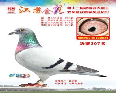 江�K金翼�Q�307名