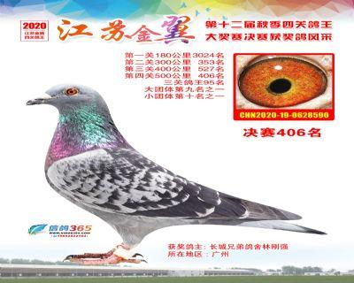 江�K金翼�Q�406名