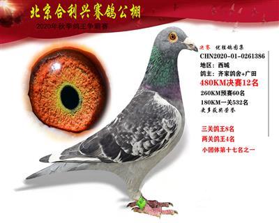 北京合利�d公棚�Q�第十二名