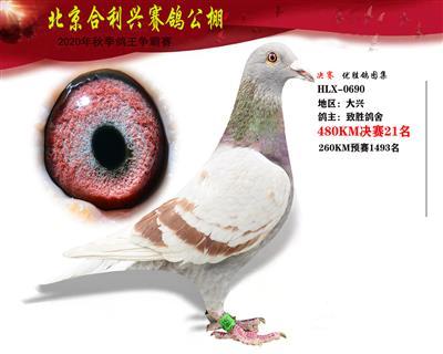 北京合利�d公棚�Q�第二十一名