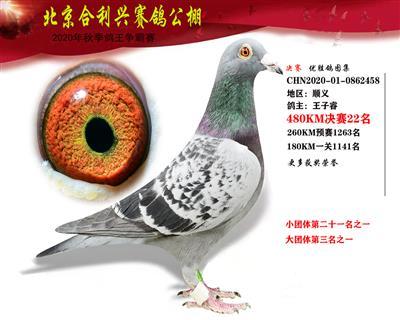 北京合利�d公棚�Q�第二十二名