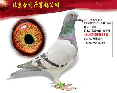 北京合利�d公棚�Q�第二十四名