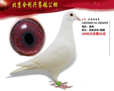 北京合利�d公棚�Q�第二十六名