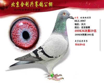 北京合利�d公棚�Q�第二十九名