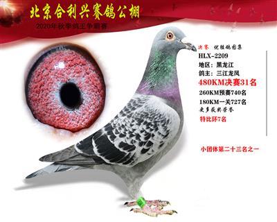 北京合利�d公棚�Q�第三十一名
