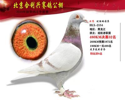 北京合利�d公棚�Q�第三十二名