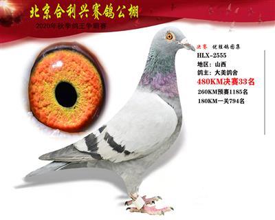 北京合利�d公棚�Q�第三十三名
