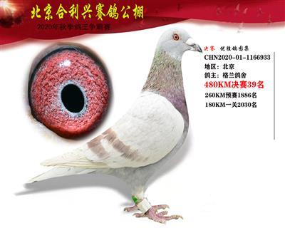 北京合利�d公棚�Q�第三十九名
