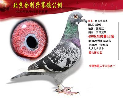 北京合利�d公棚�Q�第四十三名