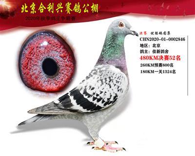 北京合利�d公棚�Q�第五十二名