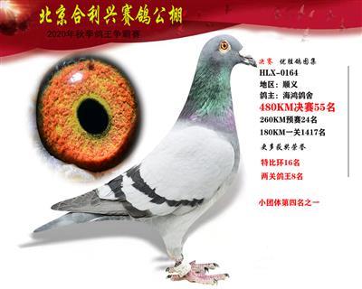 北京合利�d公棚�Q�第五十五名