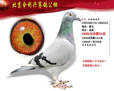 北京合利�d公棚�Q�第五十六名