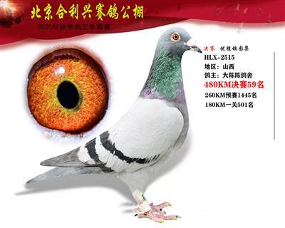北京合利�d公棚�Q�第五十九名