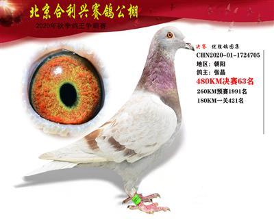 北京合利�d公棚�Q�第六十三名