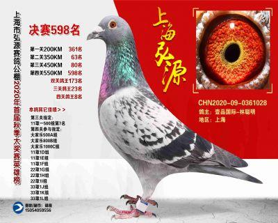 上海弘源决赛598名
