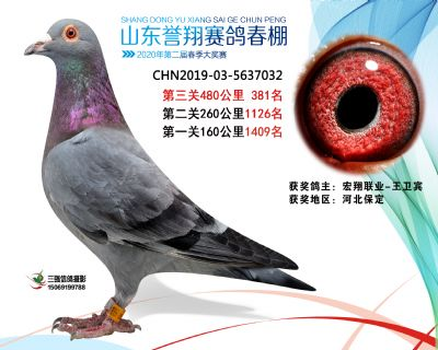 2020年誉翔381
