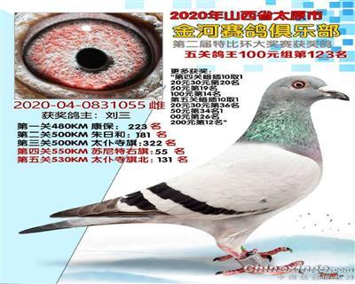 【超级胡本114近亲】五关鸽王123名