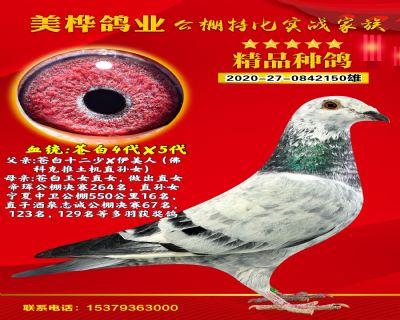 小王子150
