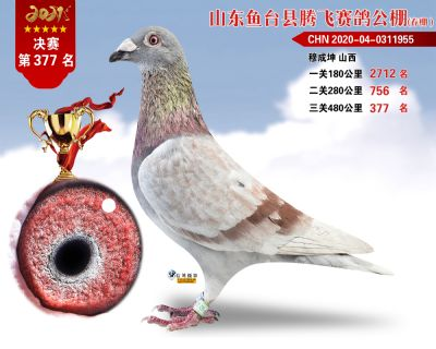 377副本