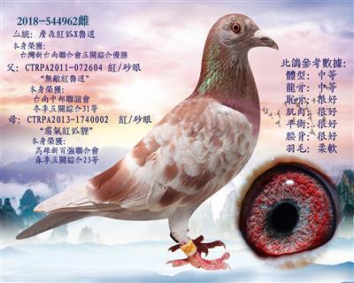"""""""詹森�t狐731""""血�}X""""�t�道"""""""